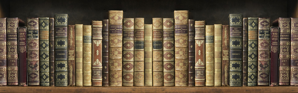 Library of Leather Books